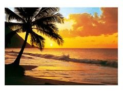 Pacific Sunset Wall Mural-WG00218