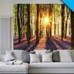 Woodland At Dawn Wall Mural-WG00952