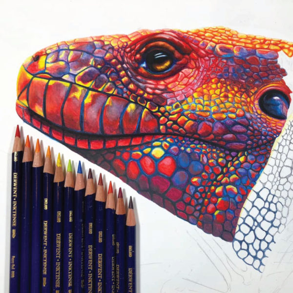 Inktense Single Pencils - Derwent