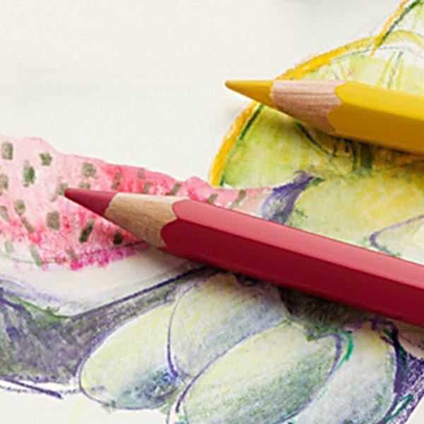 Albrecht-Durer-pencils