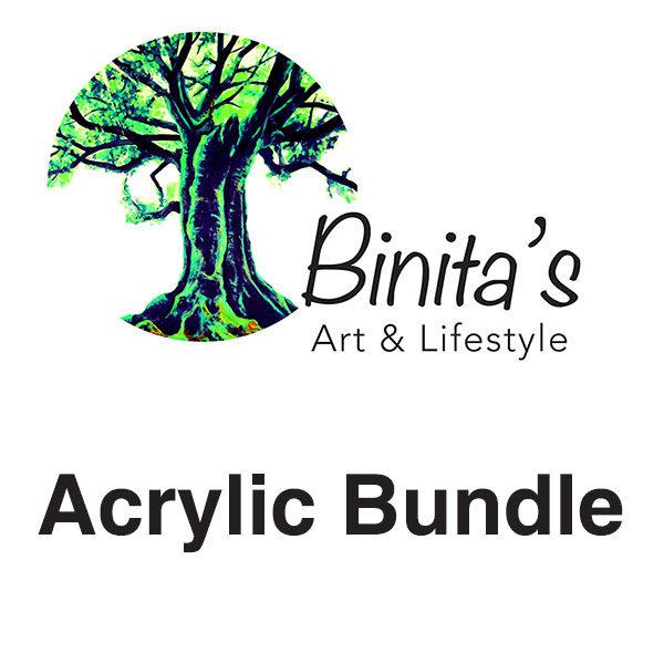 Binitas-Art-School-Acrylic-Bundle