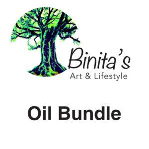 Binitas-Art-School-Oil-Bundle