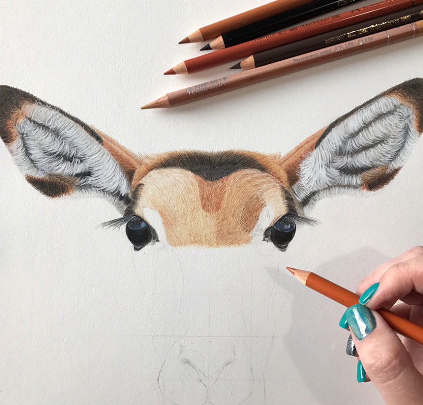Coloured Pencil Joy – 5 Reasons to try Coloured Pencils as Art Medium