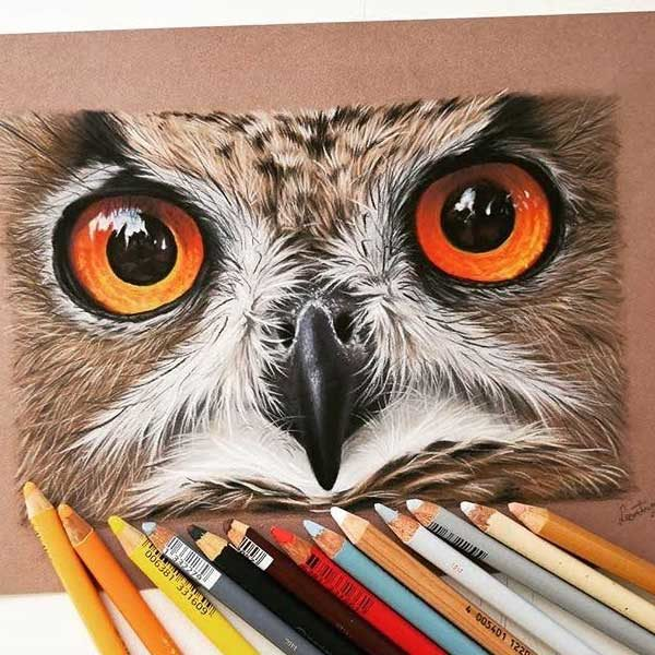 Stabilo-CarbOthello-Pastel-Pencils-Sketch-of-big-owl-face-with-orange-eyes