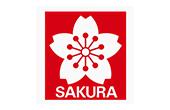 Sakura Koi