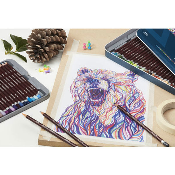 Derwent-Coloursoft-Pencil-Sketch-of-a-Bear