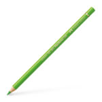 Colour Pencil Polychromos grass green