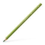 Polychromos colour pencil, earth green yellowish