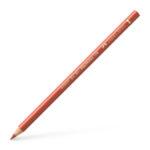 Polychromos colour pencil, sanguine