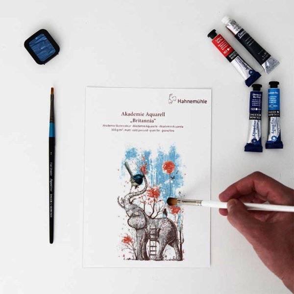 Hahnemuhle-Akademie-Aquarell-Britannia-Paper-A5-Sampler-with-painting-on
