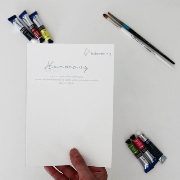 Hahnemuhle-Harmony-Watercolour-Rough-Paper-A5-Sampler-in-hand