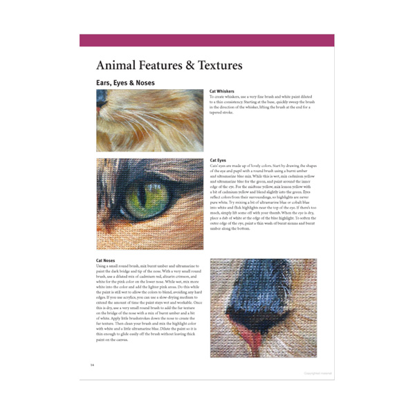 Walter-Foster-The-Art-of-Painting-Animals-Book-Inner-Pages-03