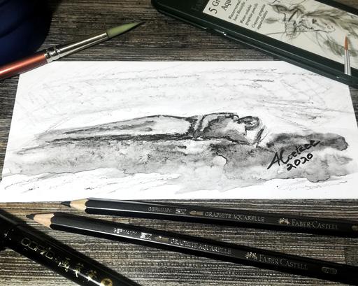 Graphite-Aquarelle-pencil-sketch