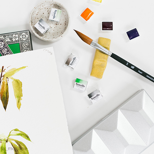 Princeton-Aqua-Elite-Dagger-Brush-with-Maimeriblu-watercolour-paints